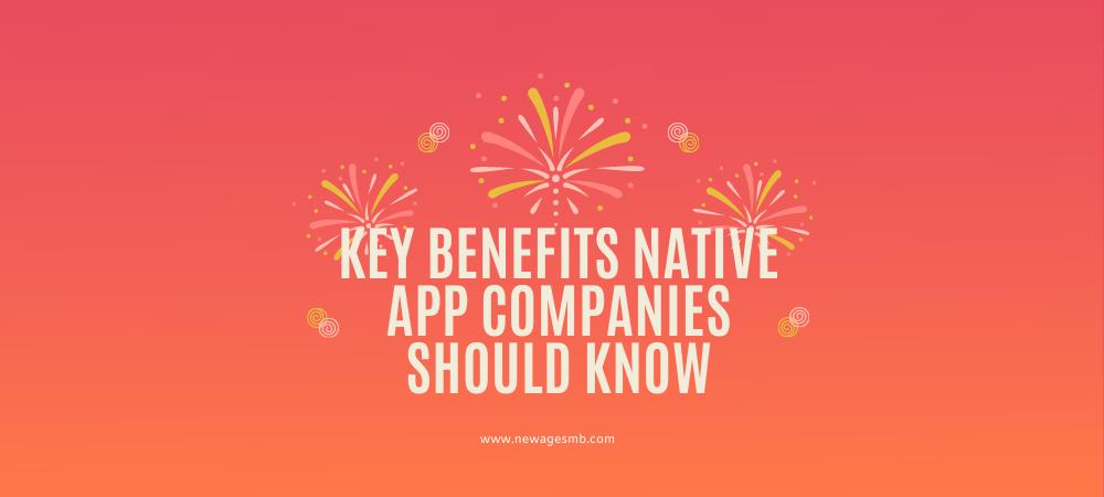 Key Benefits Native App Companies should Know